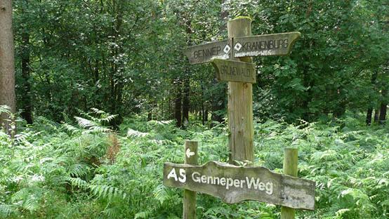 Reichswald-Genneper-weg