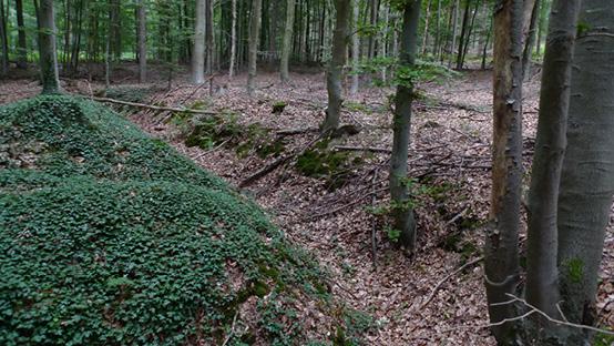 Loopgraven-Reichswald